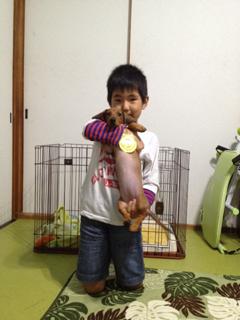 image-20131007214533.png
